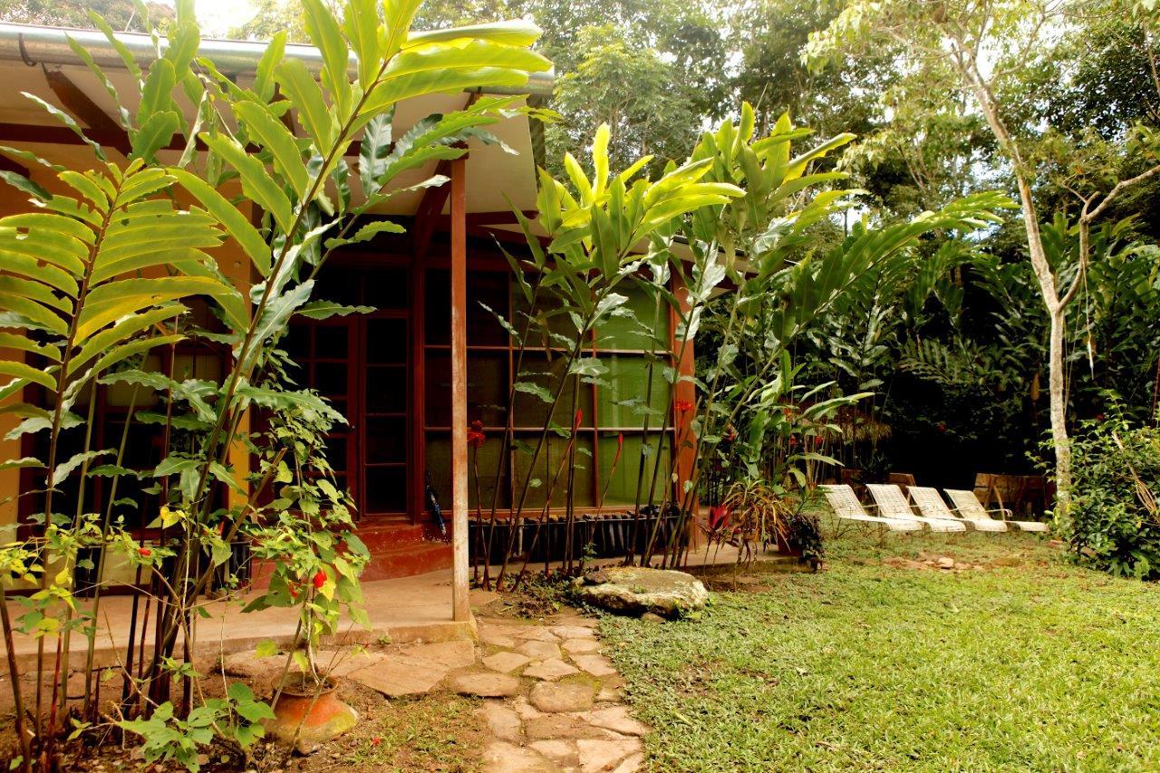 Front of Okopua and garden