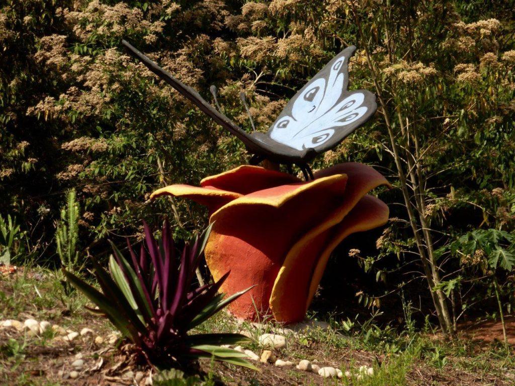 Simon's Butterfly